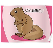 Squirrel Is Squirrel Poster