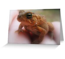 Kermit Theeeee Frog Here.... Greeting Card