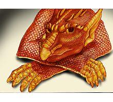 Cheeky Dragon Photographic Print