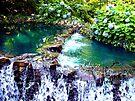 waterfall at busch gardens 2 by LoreLeft27