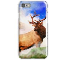 A Stroll in the Mist iPhone Case/Skin