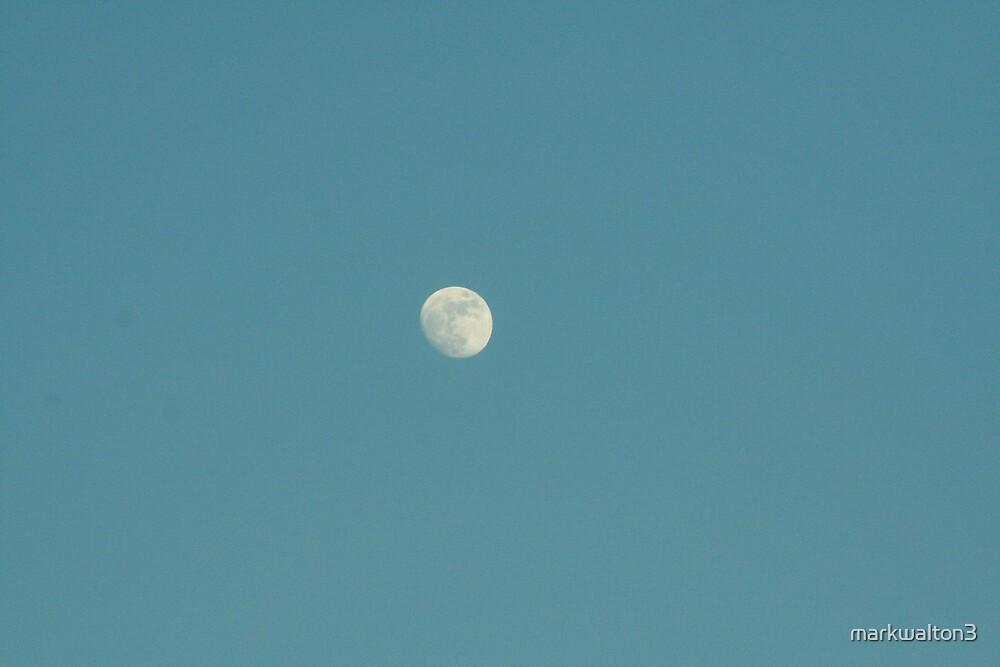 moon by markwalton3