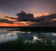 Mopani Sunset by Marie Strydom