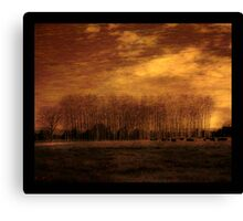 Flowers in a field Canvas Print