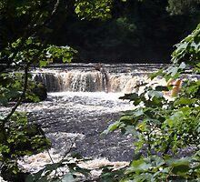 Aysgarth Upper Falls I by Keiron Allen
