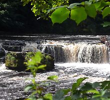 Aysgarth Upper Falls III by Keiron Allen