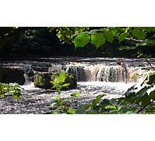 Aysgarth Upper Falls III Photographic Print