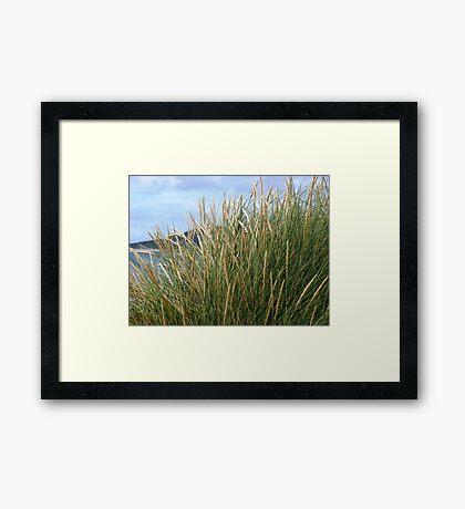 Wild Grasses - Isle of Harris Framed Print