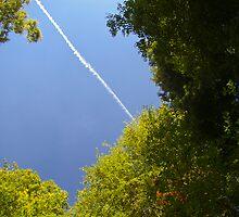 Jet stream by Steve plowman