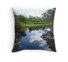swamp water Throw Pillow