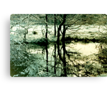 Reflections in a Wintry Pool Canvas Print