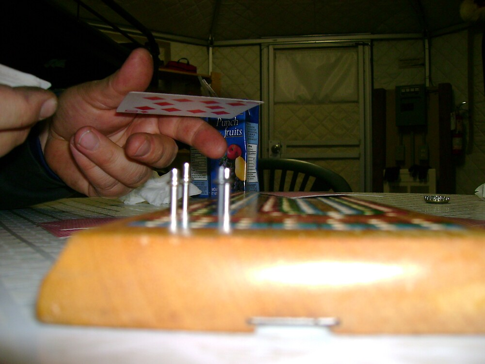 Cribbage by Robert Lake