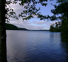 South Mazinaw Lake - Bon Echo by Robert Lake
