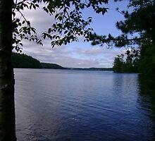 South Mazinaw Lake - Bon Echo by Robert Lake
