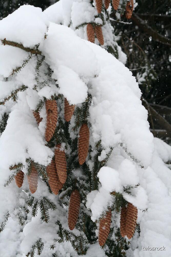 Snow Cones by telosrock