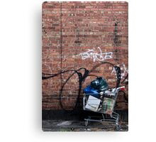 Someone's Trolley Canvas Print