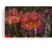 Poppies in Grunge Canvas Print