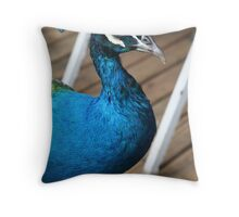 Blue Male Throw Pillow