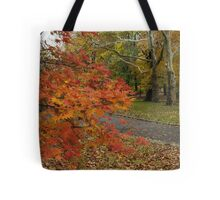 Fall Colour, Central Park, New York Tote Bag