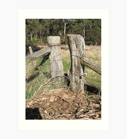 Fence Posts Art Print