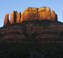 Cathedral Rock, Sedona Arizona by Tony Lupton