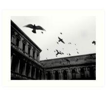 Bombing Piazza San Marco Art Print