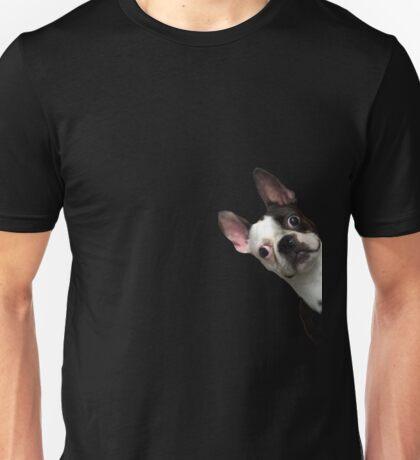 Boston Terrier #10 Unisex T-Shirt
