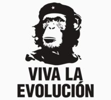 Viva La Evolution by no-doubt