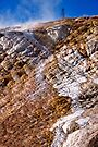 Mammoth Hot Springs 2 by Alex Preiss