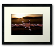 Wire'n'ice Framed Print