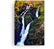 Stock Ghyll Force (1) Canvas Print