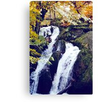 Stock Ghyll Force (2) Canvas Print
