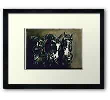 Three Cavalry Blacks Framed Print