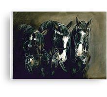 Three Cavalry Blacks Canvas Print