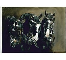 Three Cavalry Blacks Photographic Print