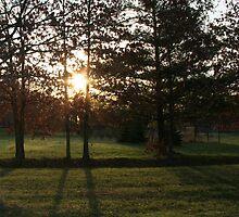 Morning Has Broken by Connie Kiskaden