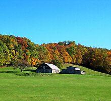 Roadside Picture of barn in WV. / Jack Boyd by JackBoyd