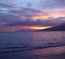 Maui Sunset by Teri Warne