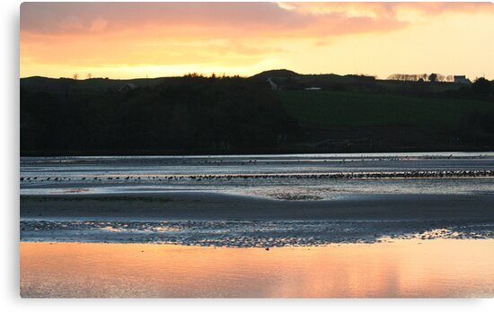 Irish waterscene by Edward  manley
