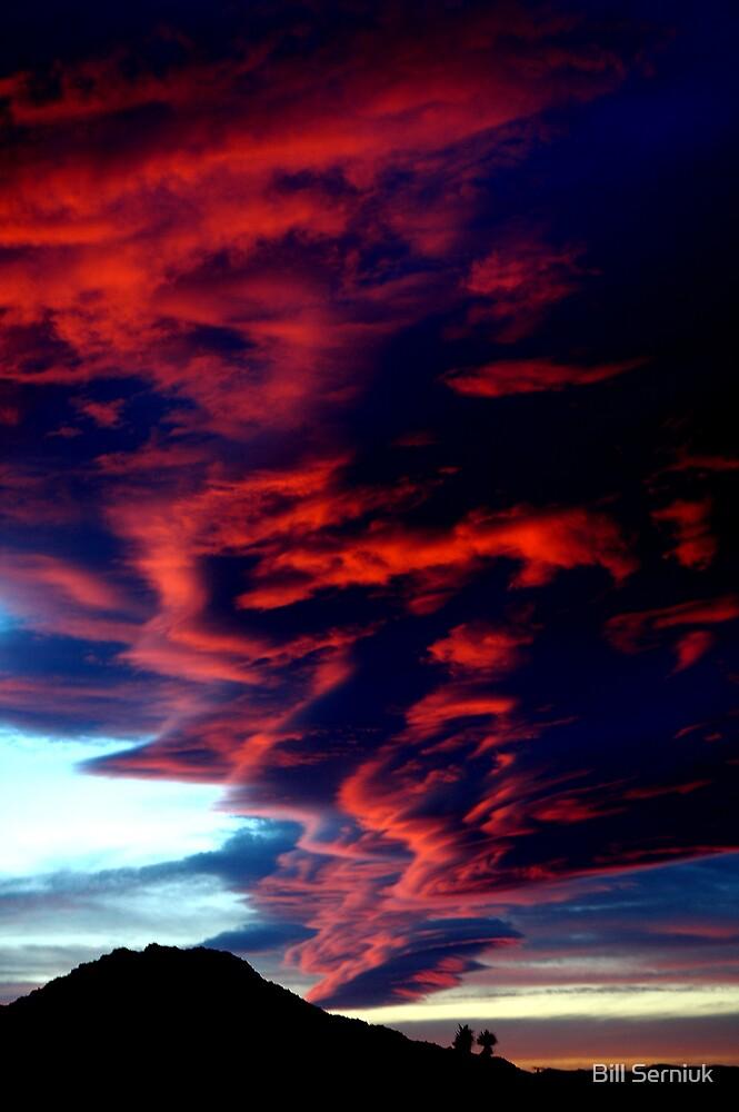 Desert Sunset by Bill Serniuk