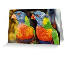 lorikeets, painted Greeting Card