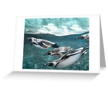 Penguin Plunge Greeting Card