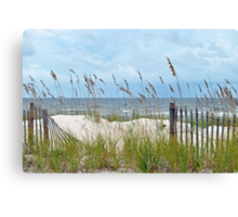 Storm Fence Canvas Print