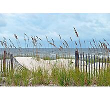 Storm Fence Photographic Print