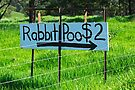 Rabbit Poo by Darren Stones