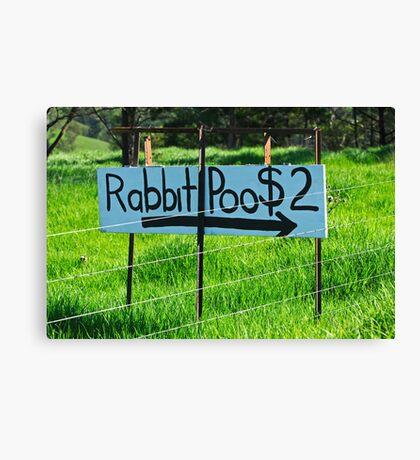 Rabbit Poo Canvas Print