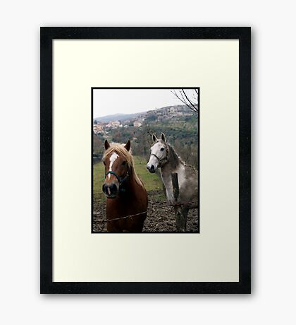 Staring at me Framed Print