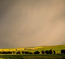 Spring Storm by Helen Simpson
