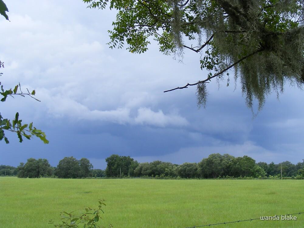 storm clouds by wanda blake