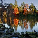 Autumn's fiery reflections by Mortimer123